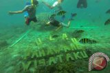 Wisata bawah laut Pahawang dipadati wisatawan
