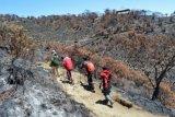 Lima pendaki Gunung Lawu tewas terjebak api