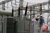 Ahli: PLTN Tak Layak Dibangun di Semenanjung Muria