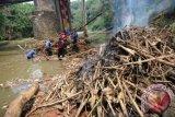 Satgas Banjir dari Dinas Bina Marga dan Sumber Daya Air Kota Depok membersihkan tumpukan sampah dan material kayu yang menghambat aliran sungai Ciliwung di bawah Jembatan Panus, Depok, Jawa Barat, Kamis (12/11). Kegiatan bersih ciliwung tersebut dilakukan untuk memperlancar aliran sungai sebagai upaya mencegah banjir memasuki musim hujan. (ANTARA FOTO/Indrianto Eko Suwarso)