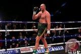 Tyson Fury Juara Dunia Tinju Kelas Berat yang Baru