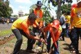Komunitas Volkswagen Indonesia Tanam Pohon di Metro