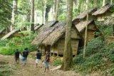 Wisatawan dilarang memasuki Baduy selama tradisi kawalu