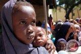 Cegah kelaparan, PBB akan tarik Rp1,4 triliun dari dana darurat