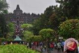 Video Iklan  Red Bull Di Candi Borobudur Tak Berizin
