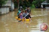 Puluhan Rumah Di Muara Teweh Kembali Terendam Banjir