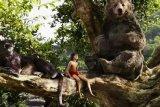 The Jungle Book Memikat Hati Warga Amerika