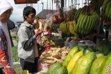 Panitia Klaim Annur Agro Wisata Expo Sudah Dikunjungi 10.000 Orang