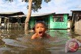 Seorang anak bermain disekitar genangan banjir rob (air laut pasang) di Belawan, Medan, Sumatera Utara, Rabu (8/6). Genangan air yang mencapai 0,5 meter yang merendam sejumlah rumah di kawasan itu, disebabkan naiknya permukaan air laut yang meluber ke daratan. ANTARA SUMUT/Septianda Perdana/16
