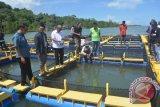 Gubernur Kagumi Pilot Project Keramba Apung