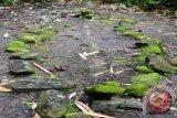 Arkeolog teliti temuan gambar  cadas di Maluku