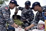 TNI AL gagalkan penyelundupan kakao warga PNG