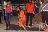 Warga negara Inggris yang juga tersangka pembunuhan polisi David James Taylor berkelahi dengan korban Aipda Wayan Sudarsa saat rekonstruksi di Pantai Legian, Bali, Rabu (31/8). Dua tersangka David James Taylor dan Sara Connor memperagakan 68 adegan rekonstruksi pembunuhan polisi Aipda Wayan Sudarsa pada 17 Agustus 2016 di tiga lokasi. ANTARA FOTO/Wira Suryantala/wdy/16.