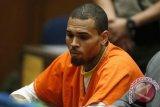 Gara-gara pelihara monyet tanpa ijin, Chris Brown terancam penjara