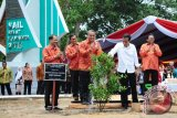 Presiden Joko Widodo (dua kanan) didampingi Wakil Ketua MPR, Oesman Sapta Odang (kanan), Sekretaris Negara, Pramono Anung (tiga kanan), Menteri Desa, Pembangunan Daerah Tertinggal dan Transmigrasi, Eko Putro Sandjojo (dua kiri) dan Menteri Pariwisata, Arief Yahya (kiri), melakukan prosesi penanaman pohon dalam rangka Sail Karimata 2016 di Pantai Pulau Datok, Kecamatan Sukadana, Kabupaten Kayong Utara, Kalbar, Sabtu (15/10). Sail Karimata 2016 yang resmi dibuka oleh Presiden Joko Widodo tersebut, bertujuan untuk mempercepat pembangunan dan mempromosikan potensi daerah. ANTARA FOTO/Jessica Helena Wuysang/16