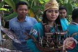 Pemuda Kalteng diajak manfaatkan potensi getah Nyatu tingkatkan ekonomi