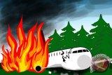 Hercules pengangkut air pemadam kebakaran hutan di Australia jatuh di tengah kobaran api, 3 tewas