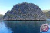 Pemandangan Pulau Pianemo yang merupakan salah satu kawasan tujuan wisata di Kabupaten Raja Ampat Provinsi Papua Barat.