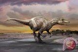 Ternyata, Masa Inkubasi Telur Dinosaurus Sama Dengan Inkubasi Telur Burung