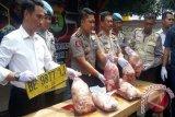 Polisi Amankan 2,5 Ton Daging Celeng