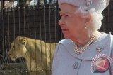 Ini alasan Ratu Inggris selalu kenakan kalung mutiara