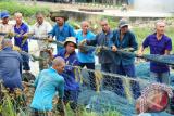 Sejumlah Anak Buah Kapal (ABK) asal Vietnam menarik jaring di Stasiun PSDKP Pontianak di Sungai Rengas, Kabupaten Kubu Raya, Kalbar, Jumat (24/3). Pada Selasa (21/3), Kapal pengawas perikanan Kementerian Kelautan dan Perikanan (KKP) Hiu Macan 01 berhasil menangkap 13 kapal ikan asing berbendera Vietnam beserta 96 ABK  karena diduga melakukan penangkapan ikan secara ilegal di perairan Indonesia. ANTARA FOTO/Jessica Helena Wuysang/17
