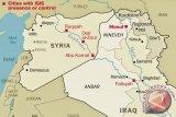 Kuburan massal ratusan jasad ditemukan di Suriah