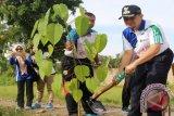 Wakil Bupati Hulu Sungai Selatan (HSS) H. Ardiansyah memimpin aksi tanam pohon dalam rangka Peringatan Hari Menanam Pohon Indonesia (HMPI) dan Bulan Menanam Nasional (BMN)Tahun 2017, yang dilaksanakan di SMKN 1 Kandangan Jalan Batuah Desa Tibung Raya Kecamatan Kandangan, Jumat (5/5). Foto (Fathurrahman/Humas HSS/Antara Kalsel