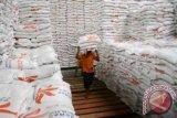 Bulog Sulawesi Utara serap beras petani  2.350 Ton
