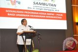 Beef Cow Farms In Central Sulawesi Potential: Governor