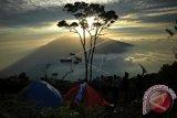 Pendaki asal Padang jatuh di Gunung Marapi