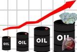 Harga minyak naik ke tertinggi dua bulan ini didorong harapan pemangkasan OPEC