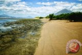 Menikmati pesona senja di Pantai Lewobuto Pulau Adonara