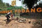 Pengunjung menikmati pemandangan di area wisata alam Sumber Podang, Desa Joho, Kediri, Jawa Timur, Minggu (29/10). Wisata alam di lereng gunung Wilis tersebut dibangun oleh masyarakat sekitar secara swadaya dengan mengembangkan potensi daerah setempat. Antara Jatim/Prasetia Fauzani/uma/17