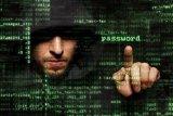 Hacker Klaim bobol situs KPU: 2,3 juta data DPT Pemilu 2014 bocor