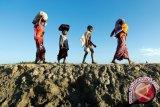 HRW: tentara Myanmar perkosa massal perempuan Rohingya