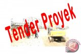 10 Dharmasraya Projects are in Auction Process