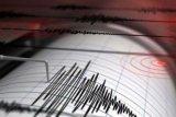 Dua gempa kuat guncang Kolombia Tengah