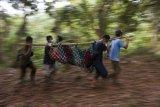 Sejumlah anggota tim penyelamat  International Animal Rescue (IAR) Indonesia membawa satu individu Orangutan saat diamankan dari kebun warga di Desa Riam Berasap, Kabupaten Kayong Utara, Kalbar, Kamis (4/1). Tim gabungan dari IAR Indonesia, BKSDA Kalbar dan Balai Taman Nasional  Gunung Palung (TNGP) berhasil memindahkan satu individu Orangutan Kalimantan (Pongo pygmaeus) dari kebun warga di desa Riam Berasap, Kabupaten Kayong Utara, ke dalam kawasan TNGP Ketapang. ANTARA FOTO/HO/Heribertus-IAR Indonesia/jhw/17