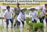 Menteri BUMN Rini M Soemarno (kedua kanan) bersama Dirut PT Pupuk Indonesia Aas Asikin Idat (kiri) dan Bupati Indramayu Anna Sophanah (tengah) melakukan penanaman padi saat peresmian Pelayanan kewirausahaan Petani, di desa Sleman, Kec. Sliyeg, Indramayu, Jawa Barat, Kamis (11/1). Program layanan kewirausahaan petani dan digitalisasi sistem pertanian tersebut diharapkan mampu mengatasi permasalahan usaha kecil. ANTARA JABAR/Dedhez Anggara