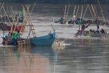 Sejumlah pekerja menambang pasir sungai Brantas di Kelurahan Semampir, Kota Kediri, Jawa Timur, Rabu (24/1). Aktifitas penambangan menggunakan perahu di tengah sungai itu semakin marak meskipun pemerintah daerah setempat melarangnya karena dinilai merusak lingkungan dan mengancam keberadaan jembatan di wilayah sekitar. Antara jatim/Prasetia Fauzani/zk/18