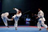 Pelatih: aturan baru karate persulit peluang Timnas di dubai