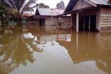 Banjir Luapan Sungai Landa Lima Kecamatan