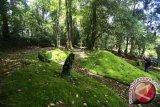 Botanical garden should be built in central sulawesi: house member