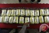 BNN dan Bea Cukai gagalkan penyelundupan narkoba dari Ethiopia