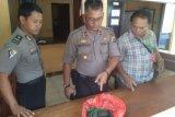 Pekerja bangunan di Jayapura temukan granat peninggalan PD II