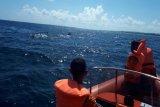 Kapal layar tenggelam di perairan Wakatobi