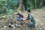 Manggala Agni Muara Teweh patroli cuaca panas
