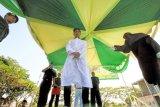 Terpidana pelanggar hukum Syariat Islam menjalani uqubat (hukuman) cambuk di Lhokseumawe, Aceh, Selasa (20/2). Tiga terpidana pelanggaran Syariat Islam Qanun (peraturan daerah) Nomor 6/2014 tentang hukum jinayat meliputi kasus Maisir (perjudian) dan Jarimah (perzinahan) menjalani vonis hukuman sebanyak 31 hingga 131 cambukan menggunakan rotan sebagai wujud penegakan syariat Islam di Provinsi Aceh. (ANTARA FOTO/Rahmad/ama/18)