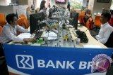 BRI: Dana hilang tidak lebih dari Rp1 miliar